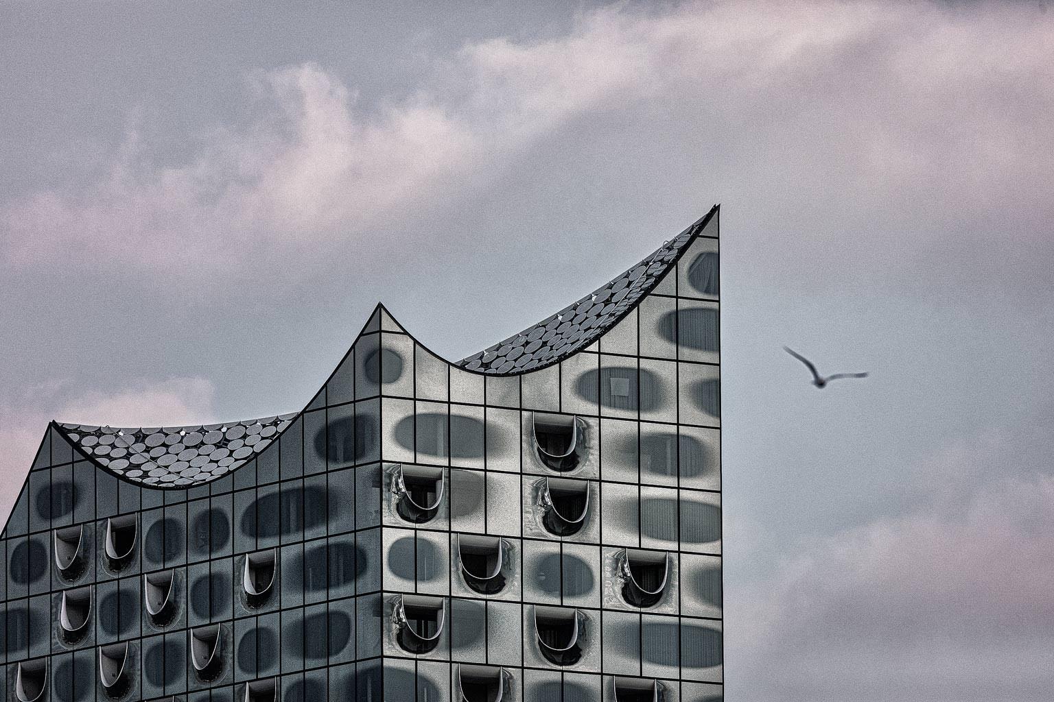 Fassade Elbphilharmonie Möve freie Arbeit